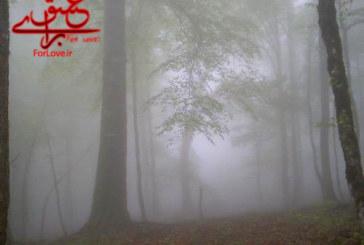 طبیعت زیبای مازندران